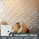 Pack Panneau Mural 3d Cullinans + colle