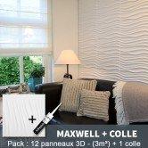 Pack Panneau Mural 3d Maxwell + colle