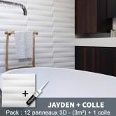 Pack Panneau Mural 3d Jayden + colle