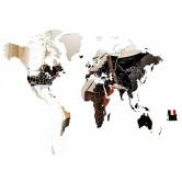 Carte du Monde Miroir