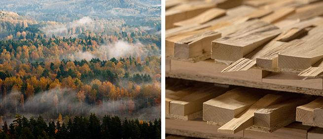 bois massif fsc