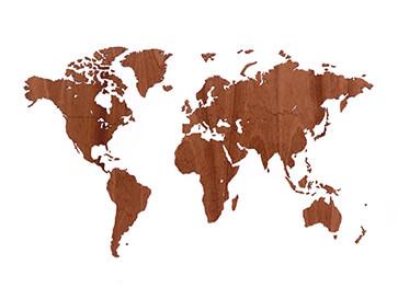 carte du monde bois précieux